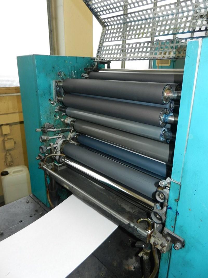Edelmann Junior Print DR2450